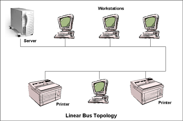 Linear Bus Topologies  A linear bus topology is laid out in a straight    Linear Topology