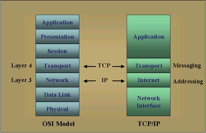 Tcpip tcpip focuses on layers 3 and 4 of the osi reference model as seen in the following diagram ccuart Gallery